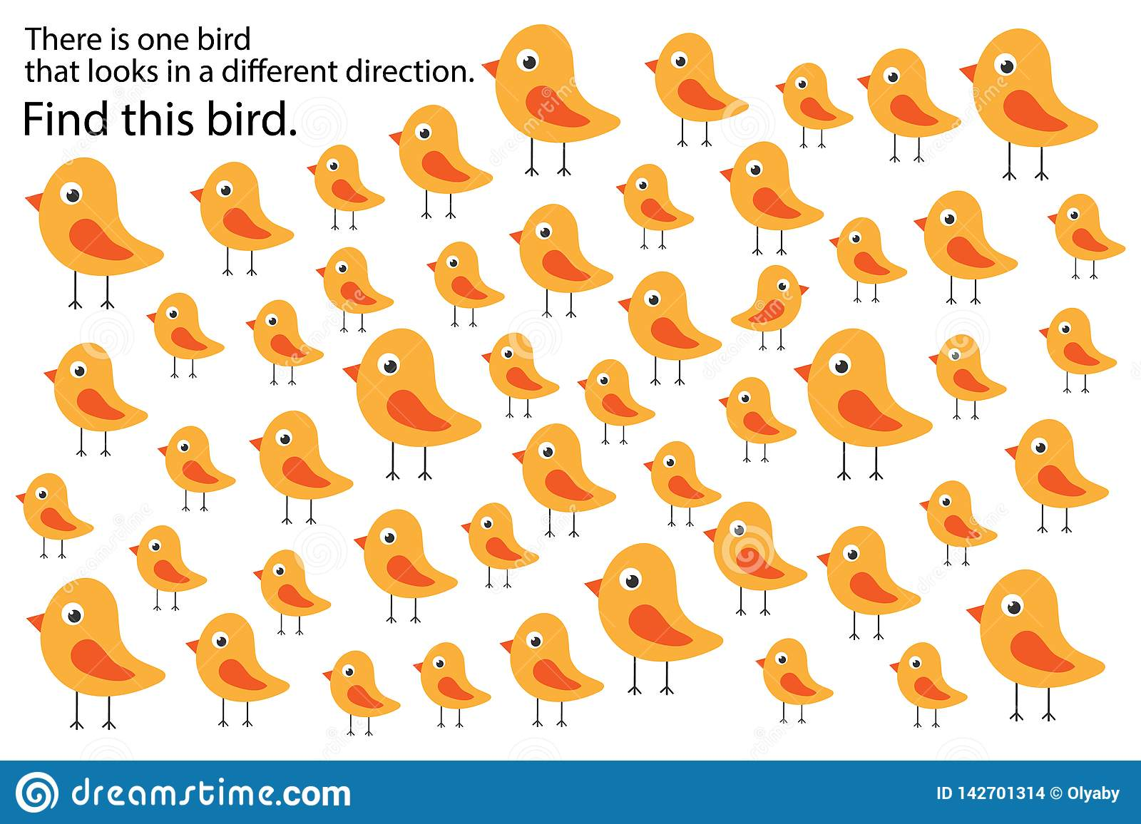 Find Bird That Looks In Other Direction Springs Education