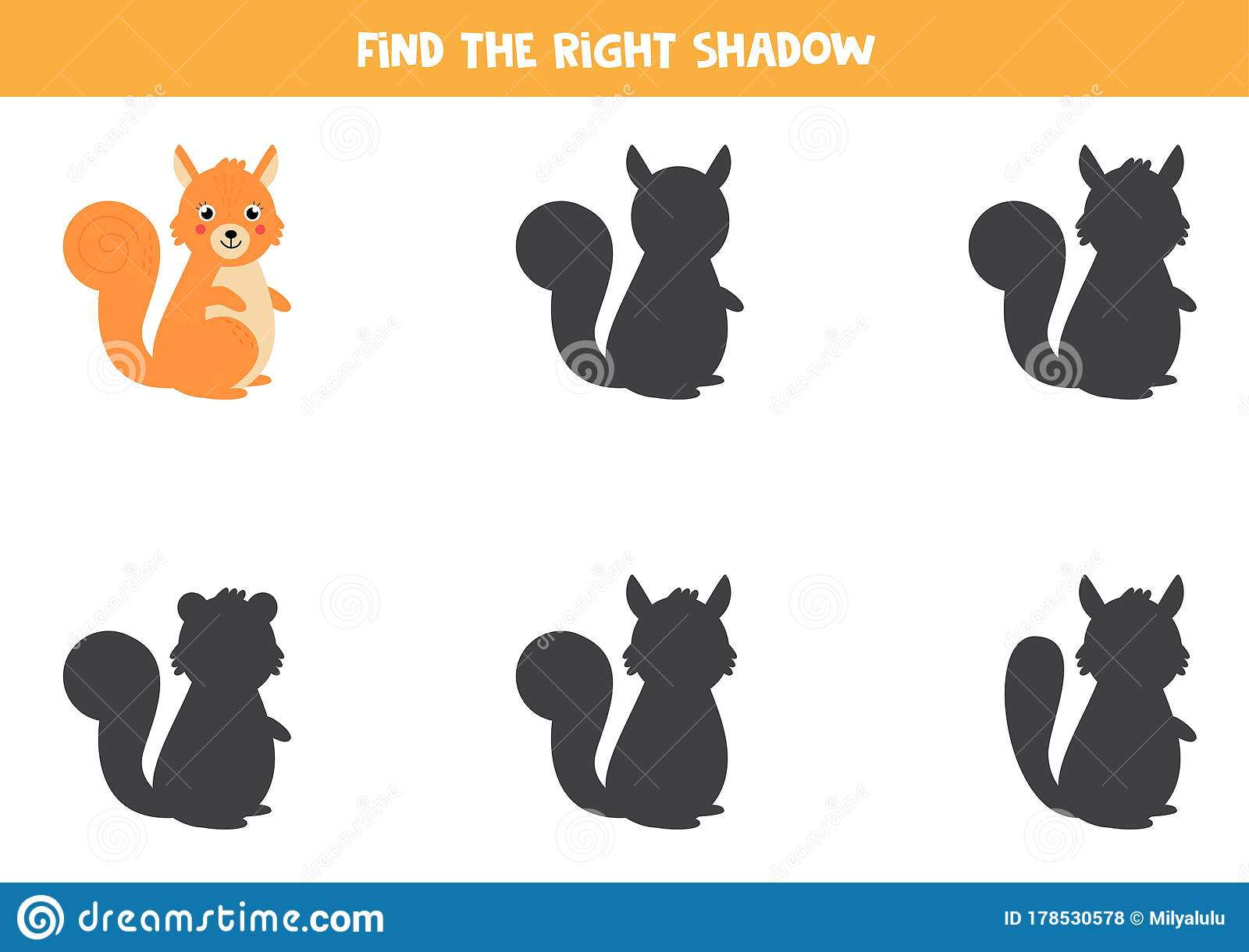 Find The Correct Shadow Of Cute Cartoon Squirrel