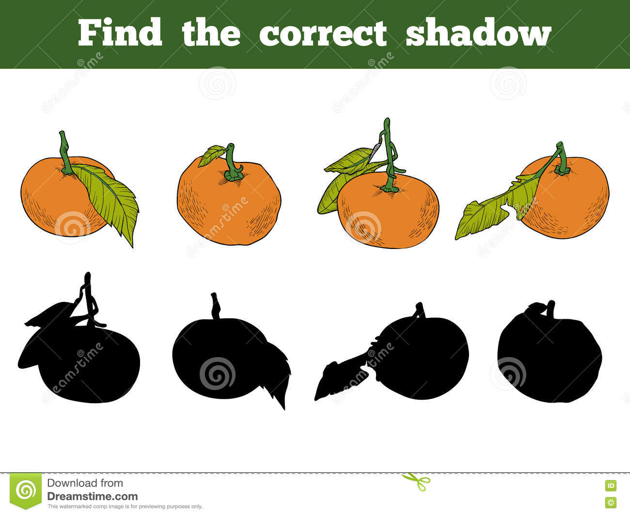Find The Correct Shadow Vector Color Set Of Orange Fruits