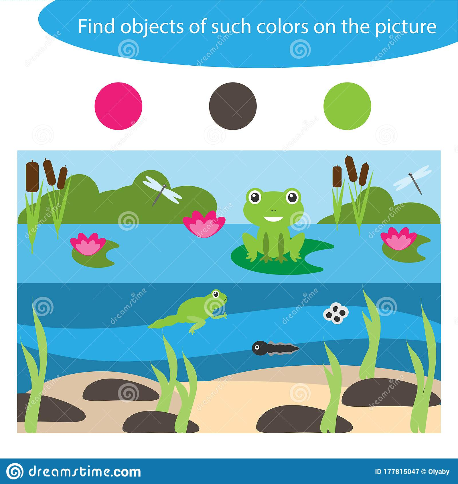 Find Objects Of Same Colors Pond Life Game For Children