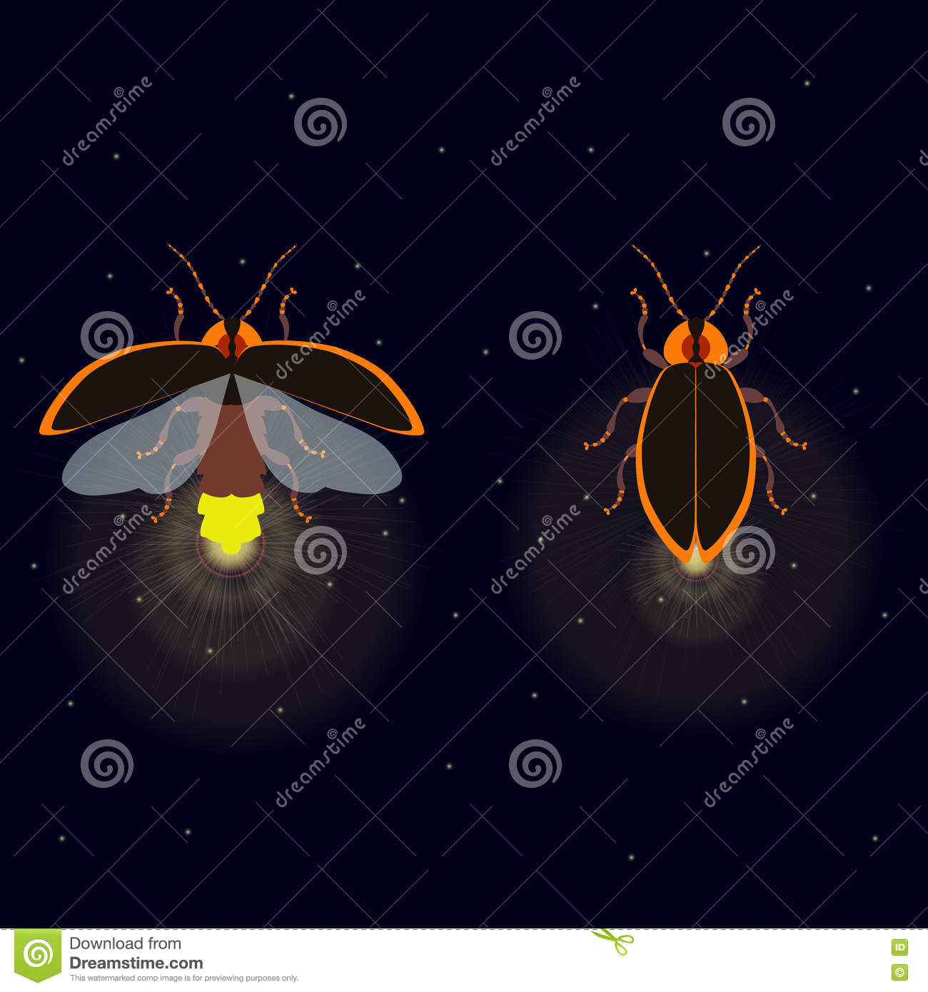 hight resolution of firefly bug with open and closed wings on dark background bug glowworm symbol luminous lightning bug illustration two fireflies glowing at night