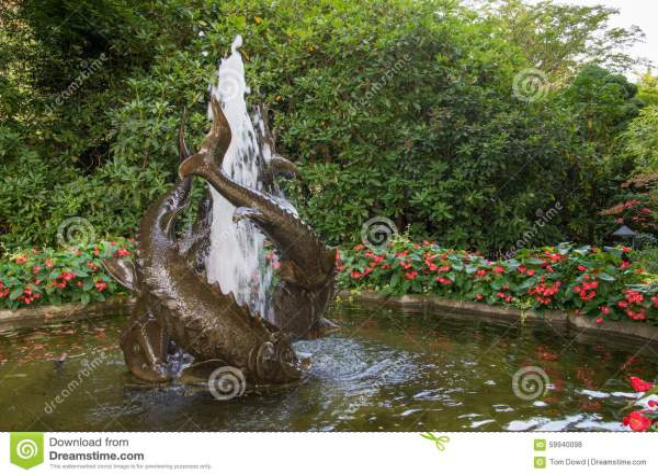 Fish Fountain In Japanese Garden Butchard Gardens