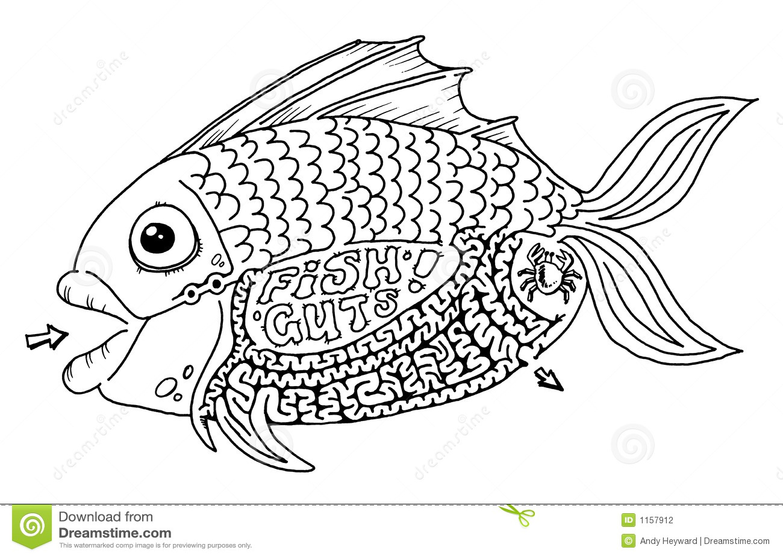 Fish Guts Maze Stock Photography