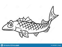Sea Animals Cartoon Coloring Pages