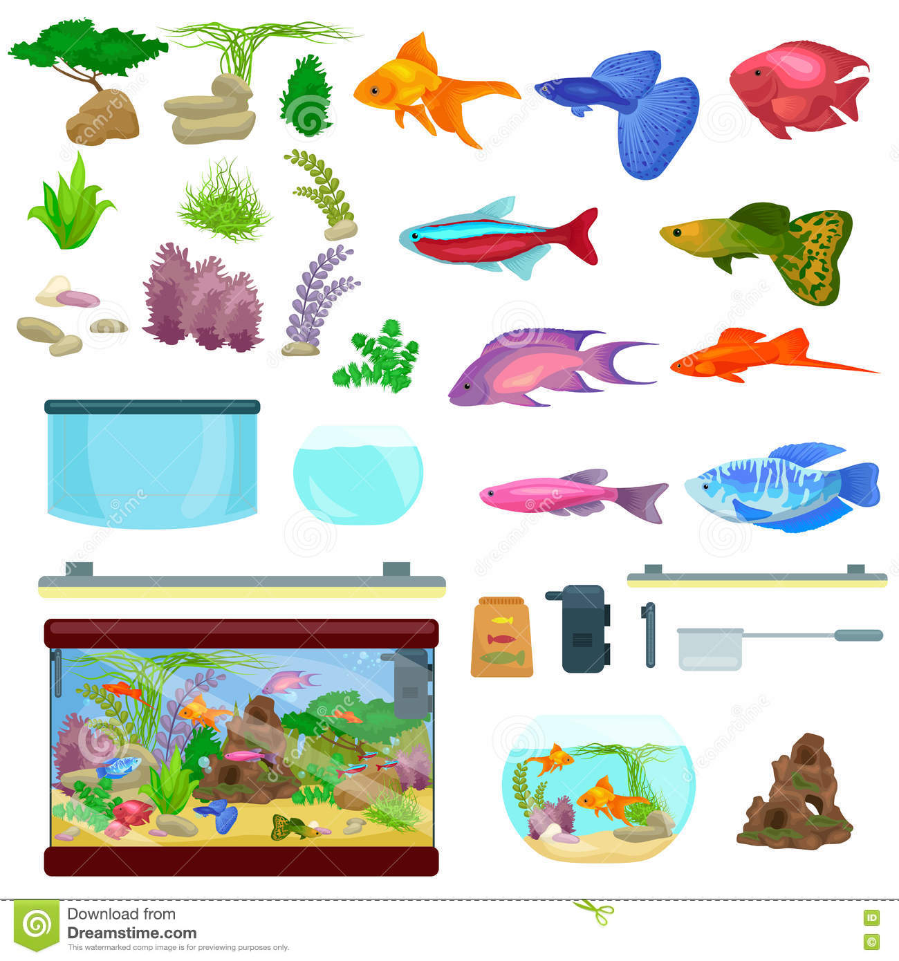 Fish Tank Aquarium With Water Animals Algae Corals