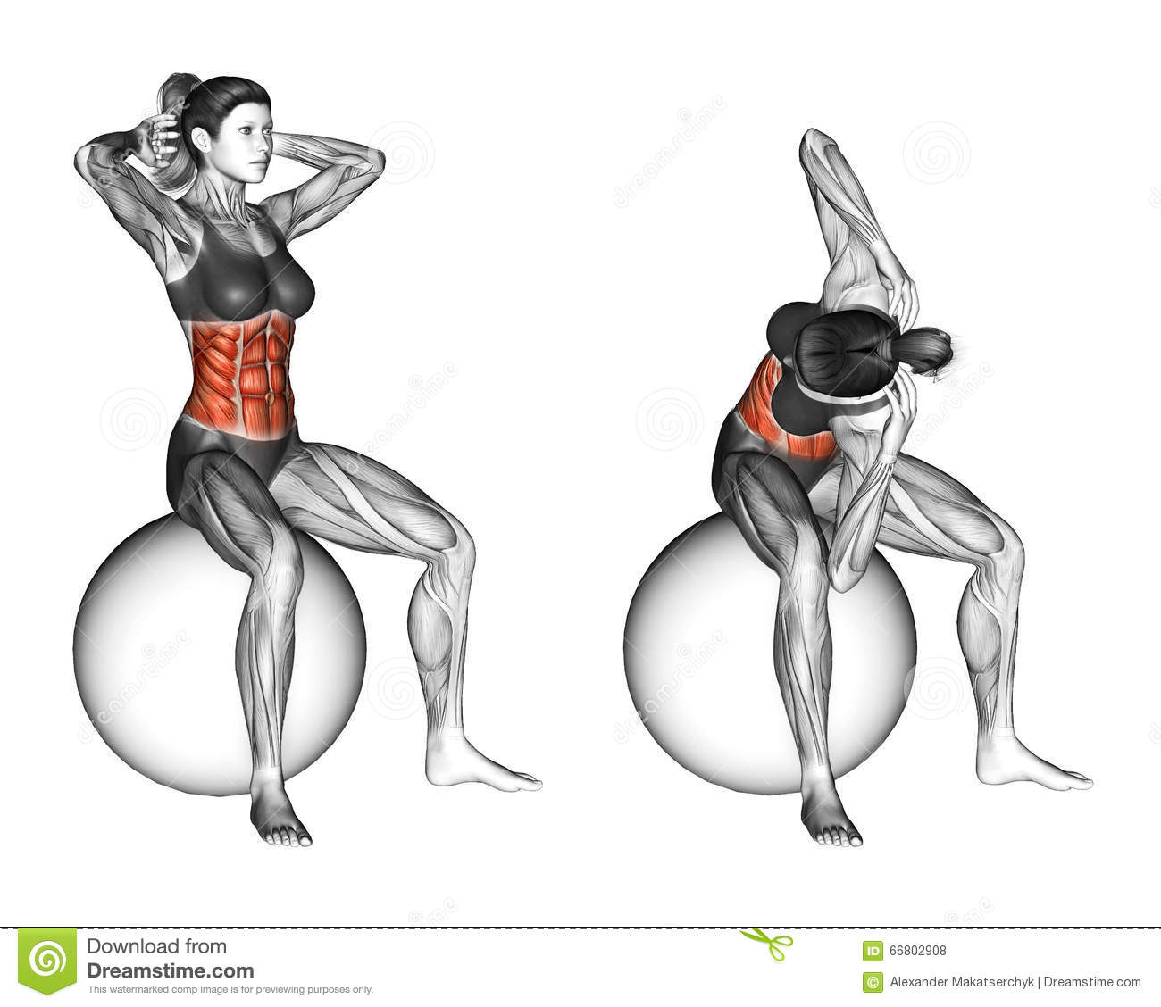 Fitball Exercising. Spinal Stretch. Female Stock