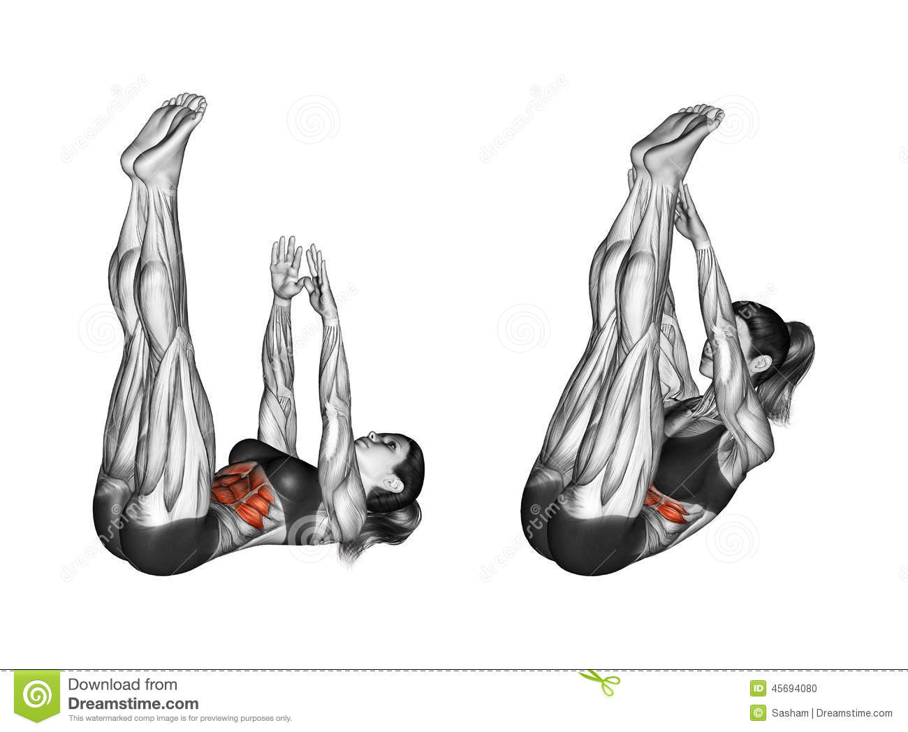 Fitness Exercising. Flexion Of The Body With A Compound Of