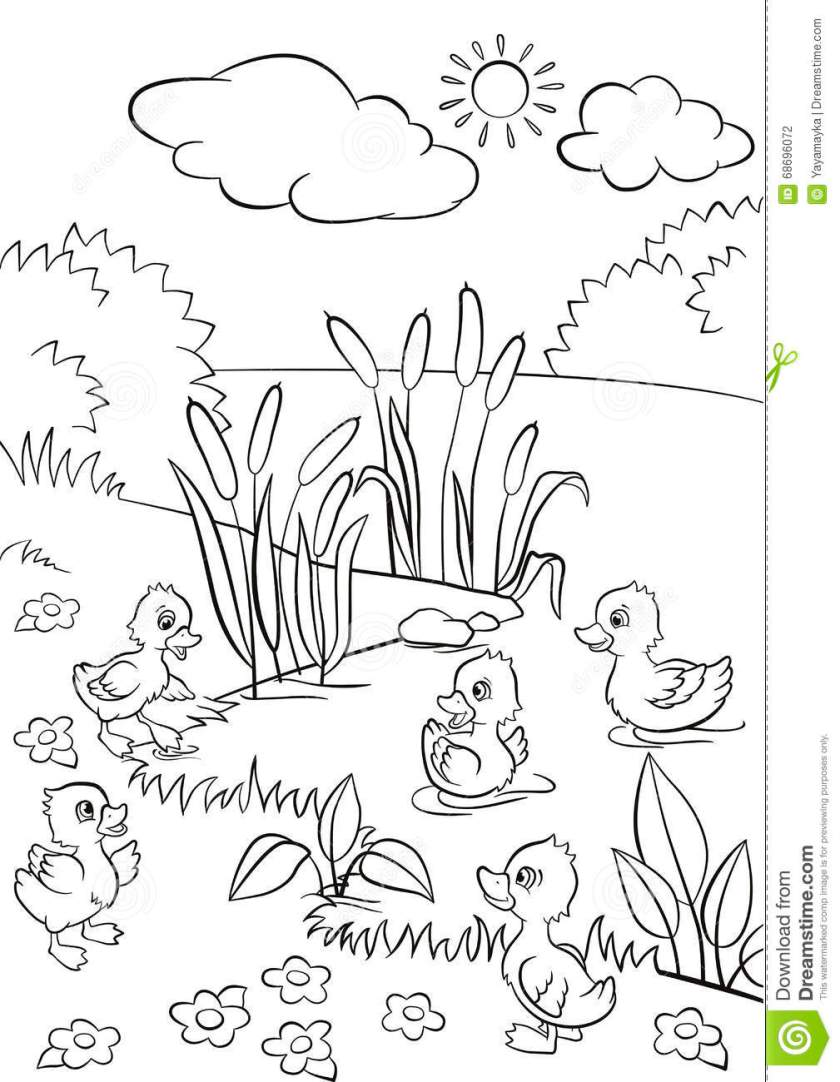 five little cute ducklings swim on the lake and stand on