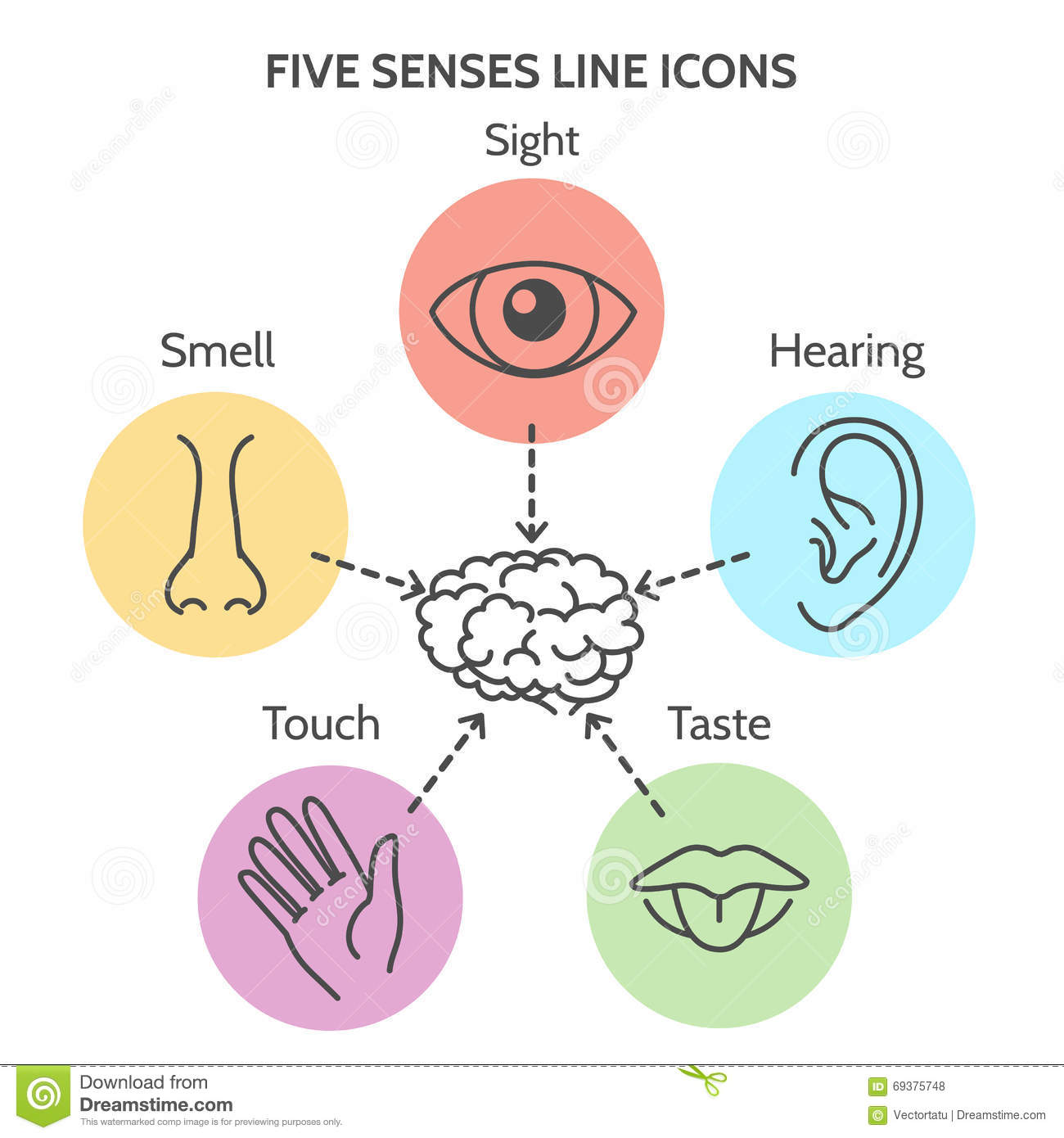 Five Senses Line Icons Stock Vector