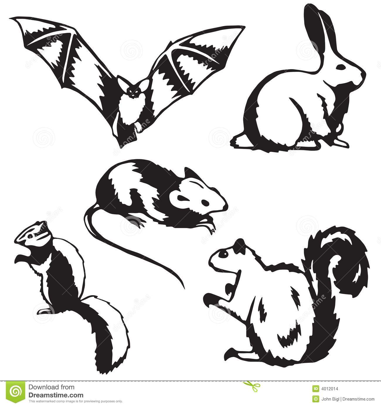 Five Small Mammals Stock Images