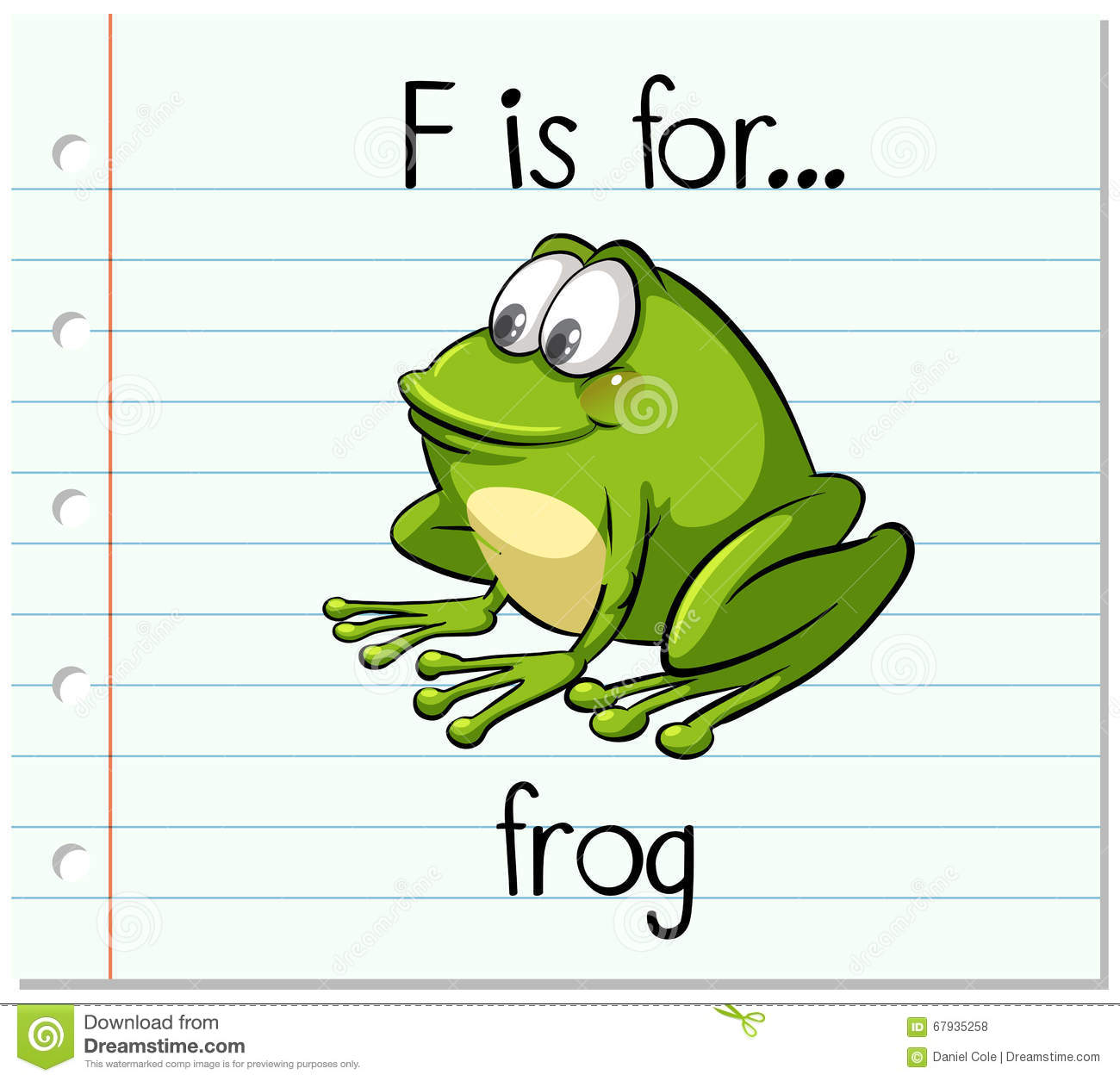 Flashcard Letter F Is For Frog Stock Vector