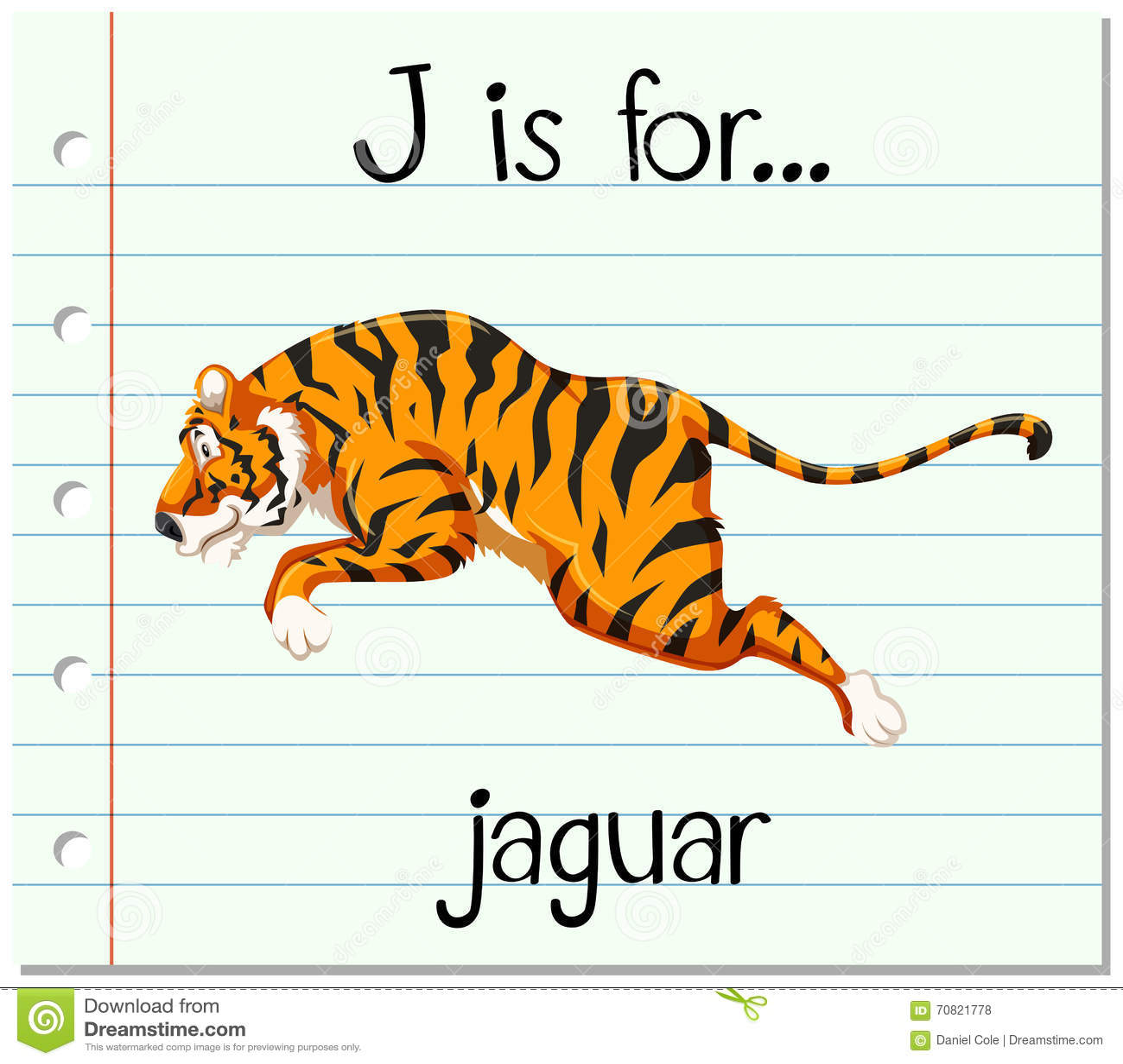 Flashcard Letter J Is For Jaguar Stock Vector