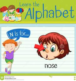 flashcard letter n is for nose [ 1300 x 1346 Pixel ]