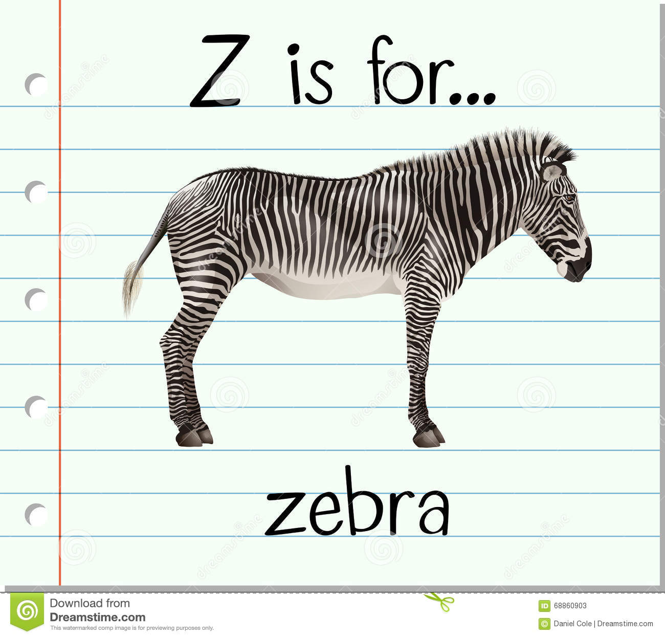 Flashcard Letter Z Is For Zebra Stock Vector