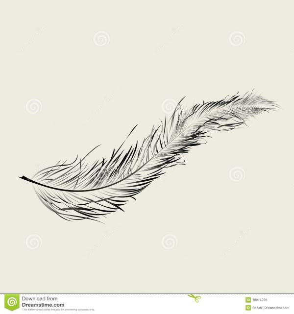 Floating Feather Royalty Free Stock - 10914706