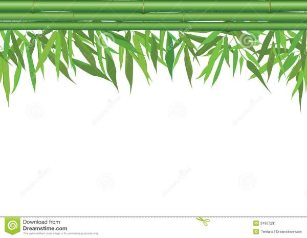Floral Seamless Border With Bamboo Leaves Stem And Copy