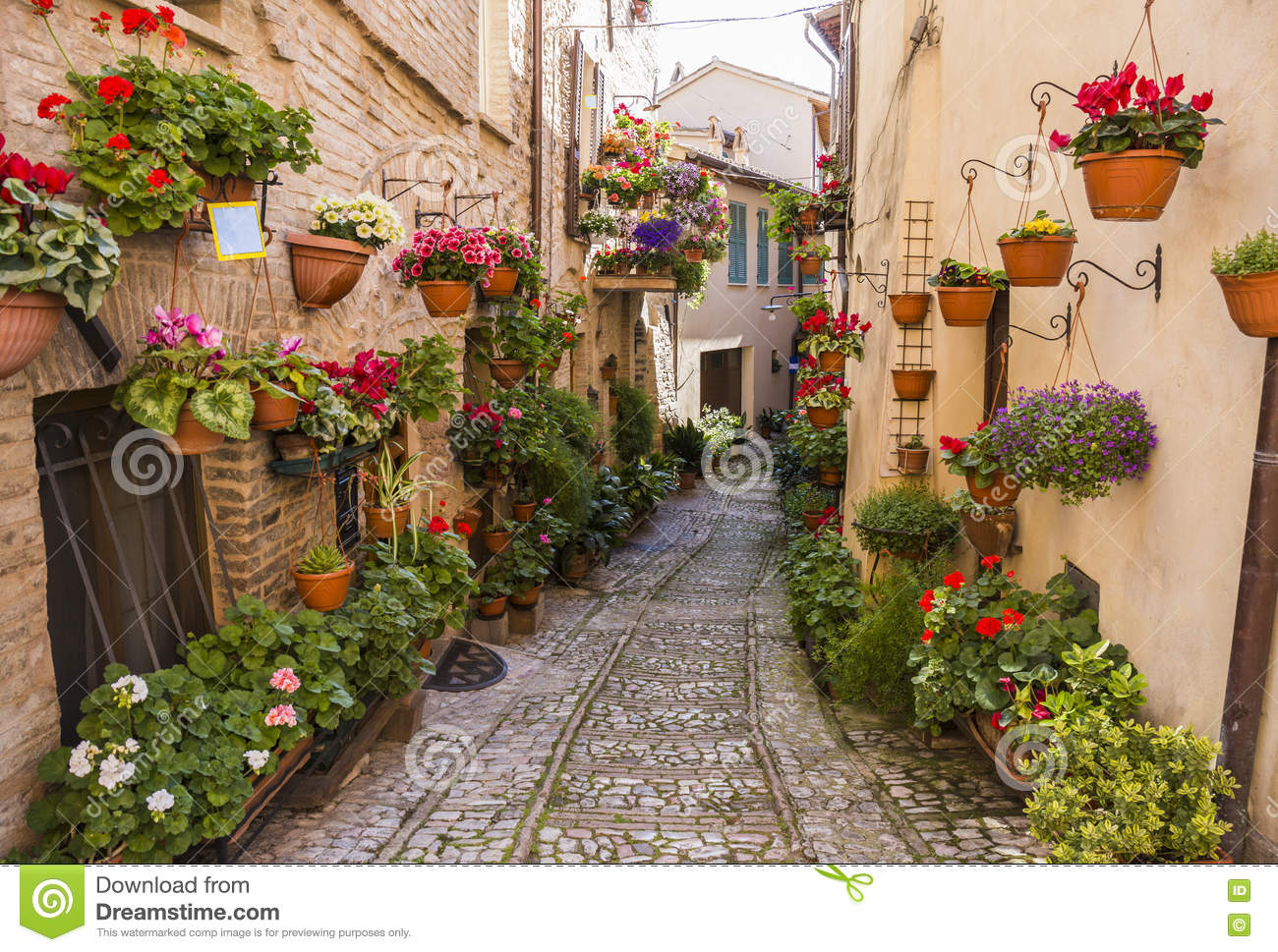 Floral Streets Of Spello In Umbria Italy Stock Photo
