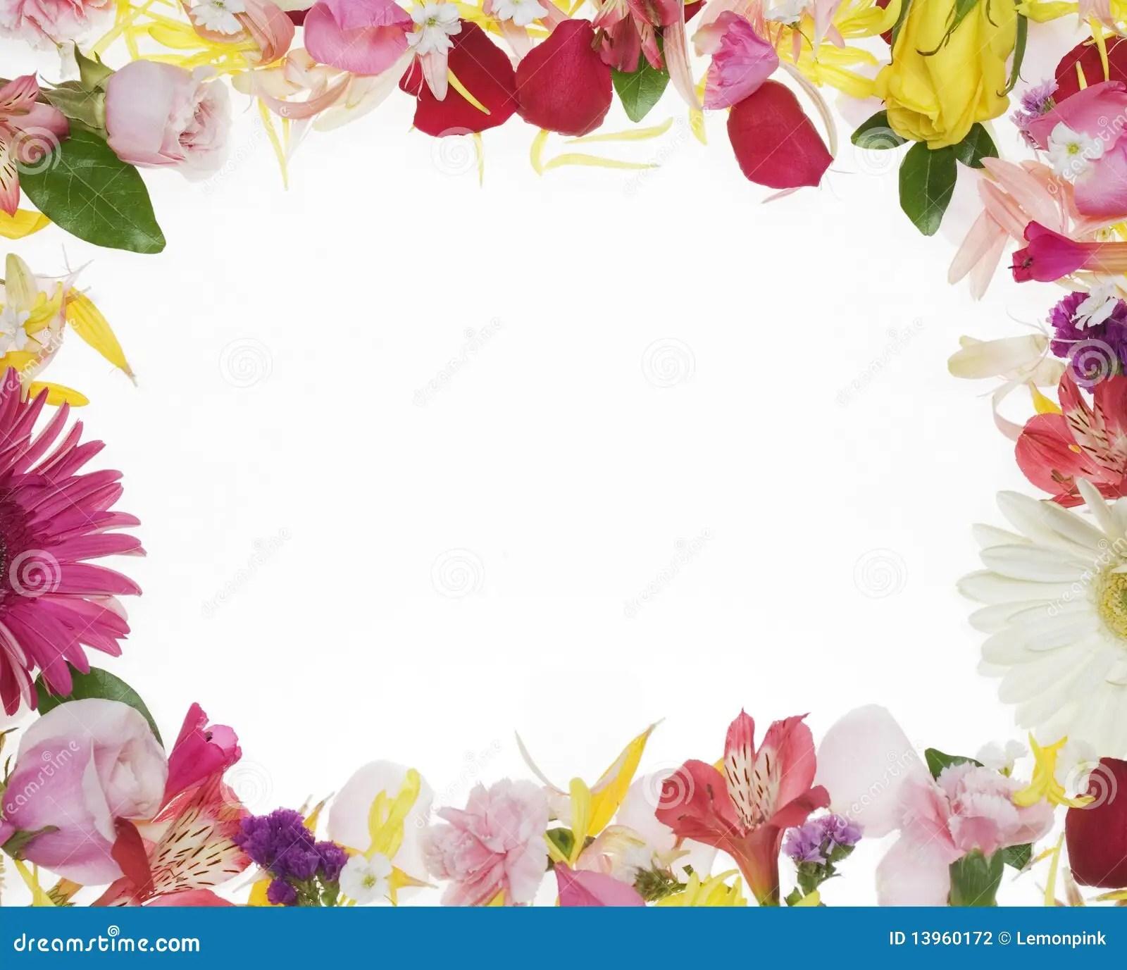 Flower Border Stock Photo Image Of Yellow Background