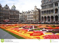 Flower Carpet In Brussels Royalty Free Stock Photo - Image ...