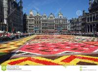 Flower Carpet 2016 In Brussels Editorial Image ...