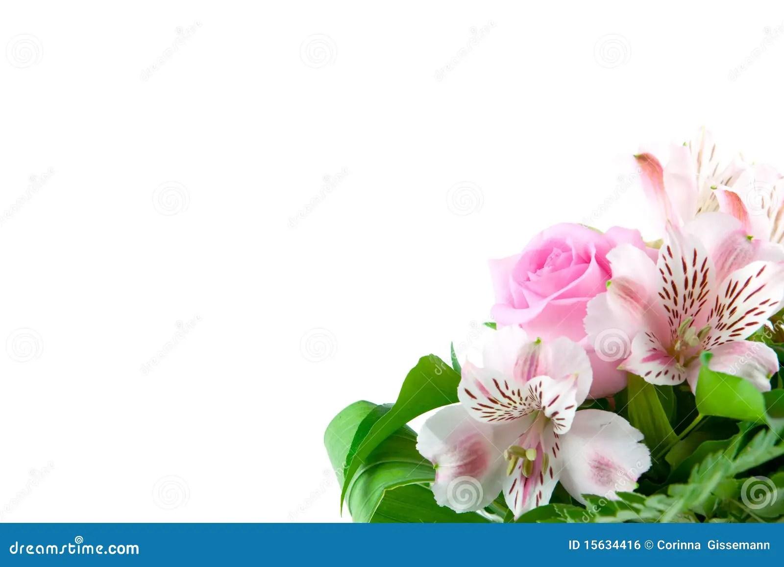 flower greetings stock photo