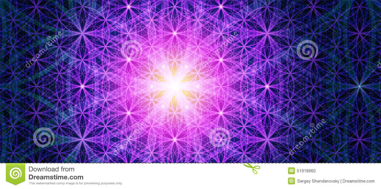 The Flower Of Life Background Stock Vector  Image 51918960