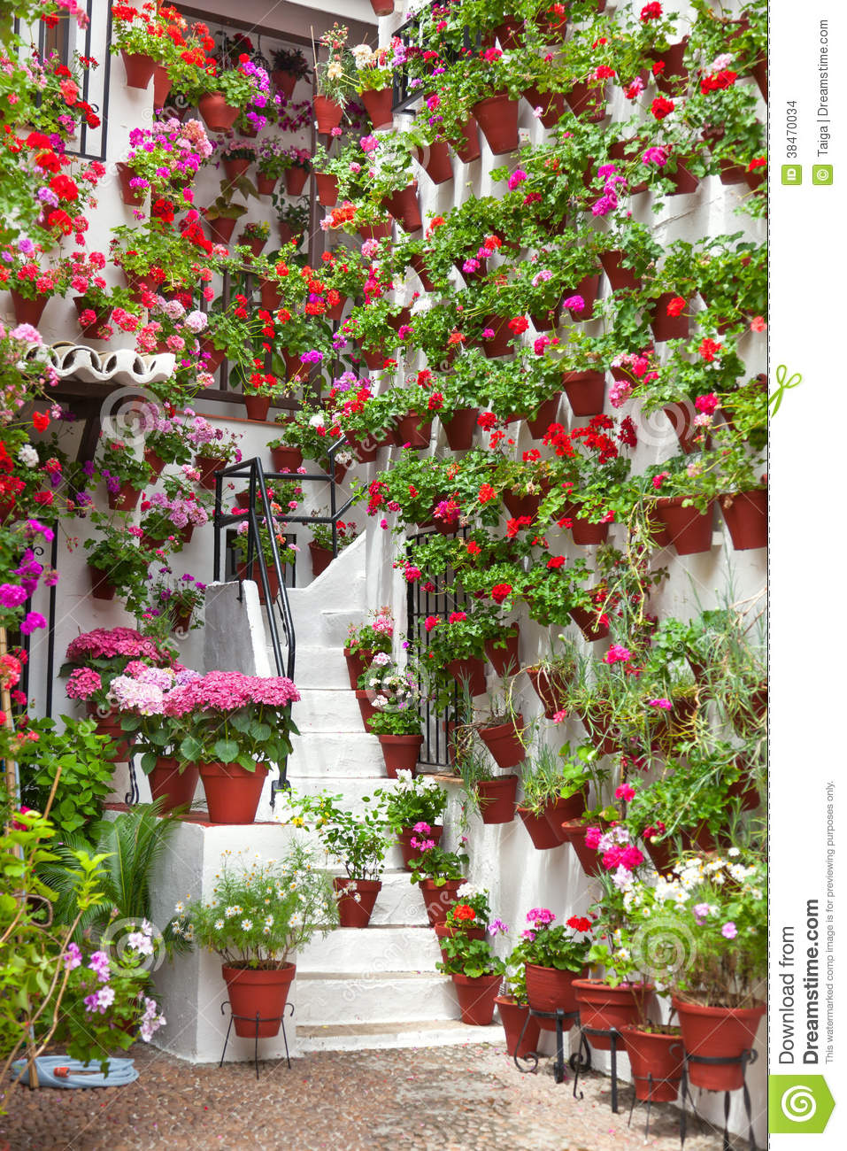 Flowerpots And Flowers On A White Wall Old European Town