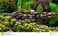 Flowers And Pond Stock Photo - Image: 48472336