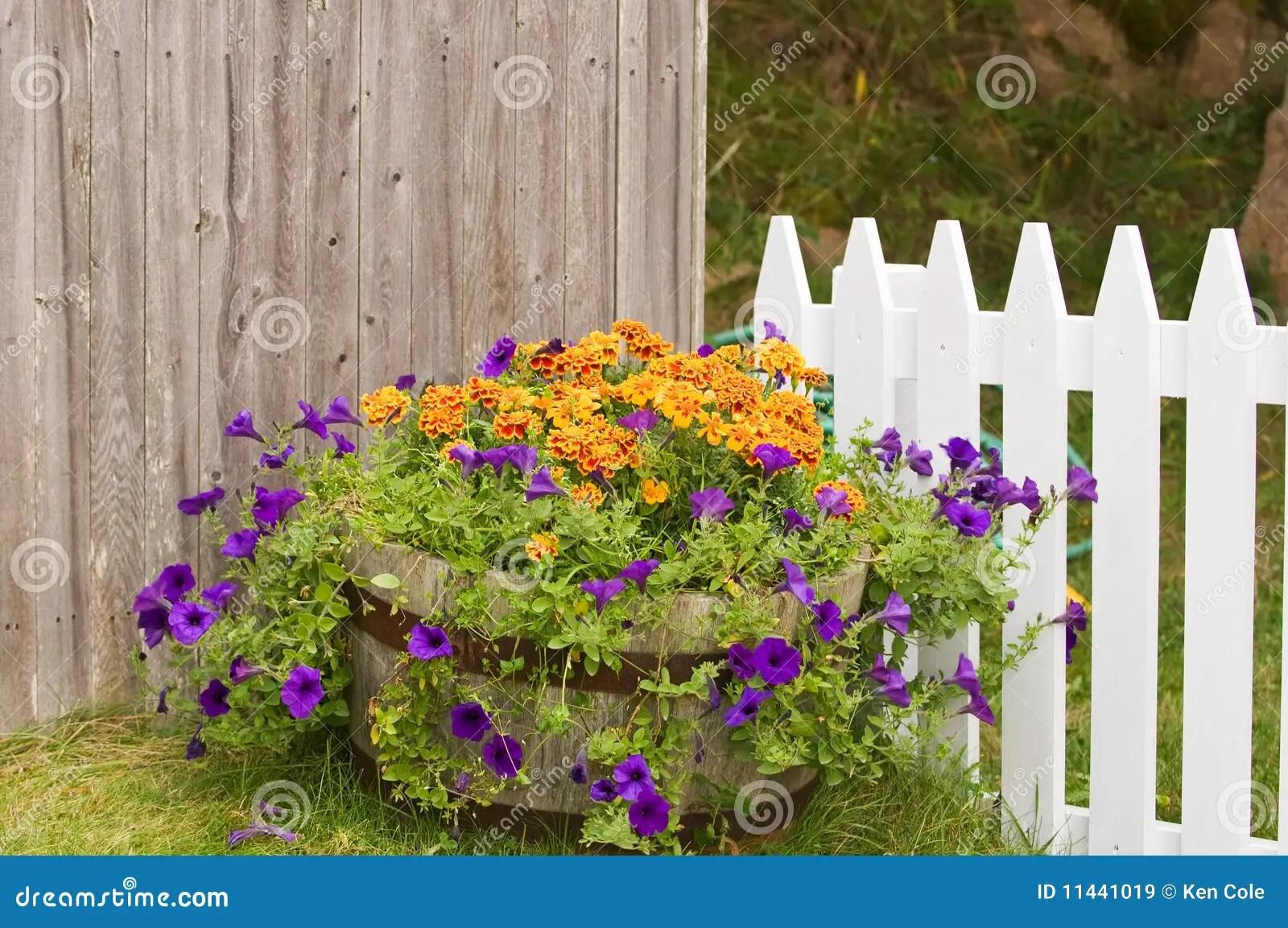 Flowers Pot Near Fences Stock Image Image Of Fence