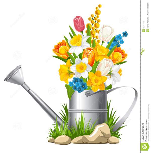 flowers in watering stock vector