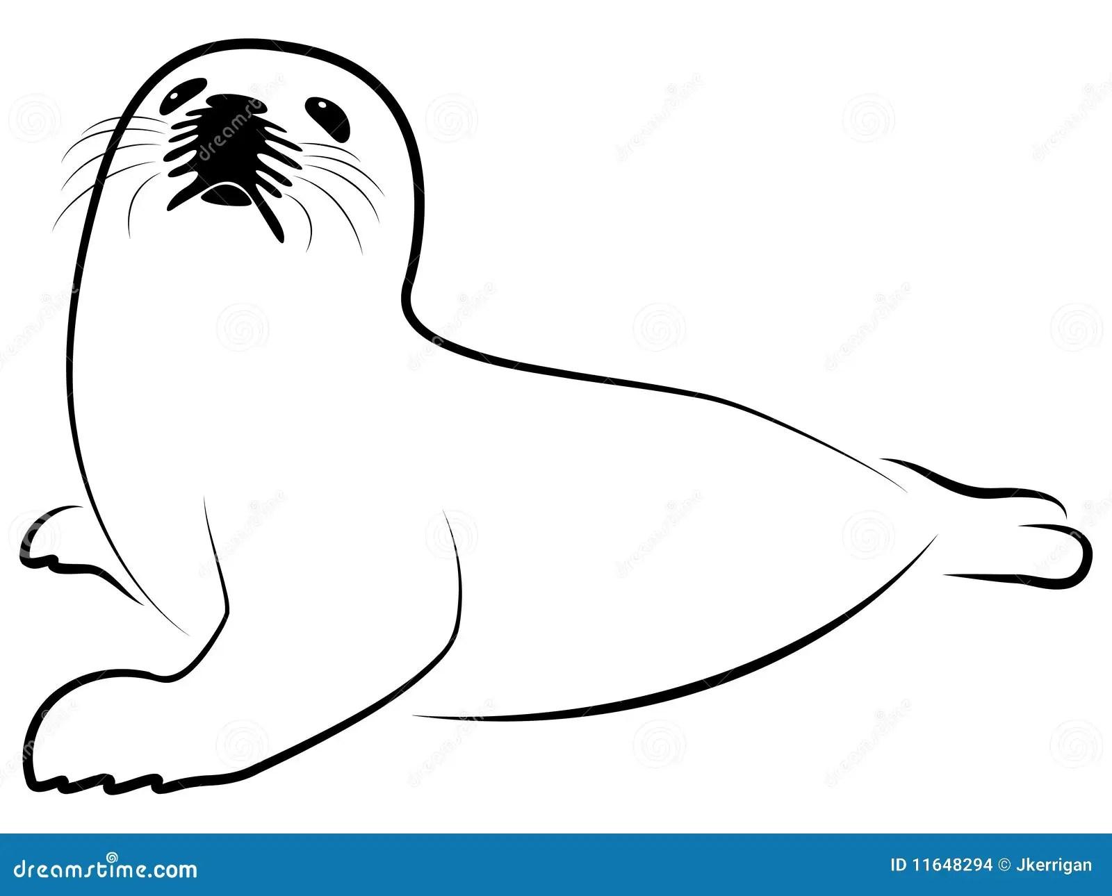 Foca Della Groenlandia Del Bambino Immagini Stock