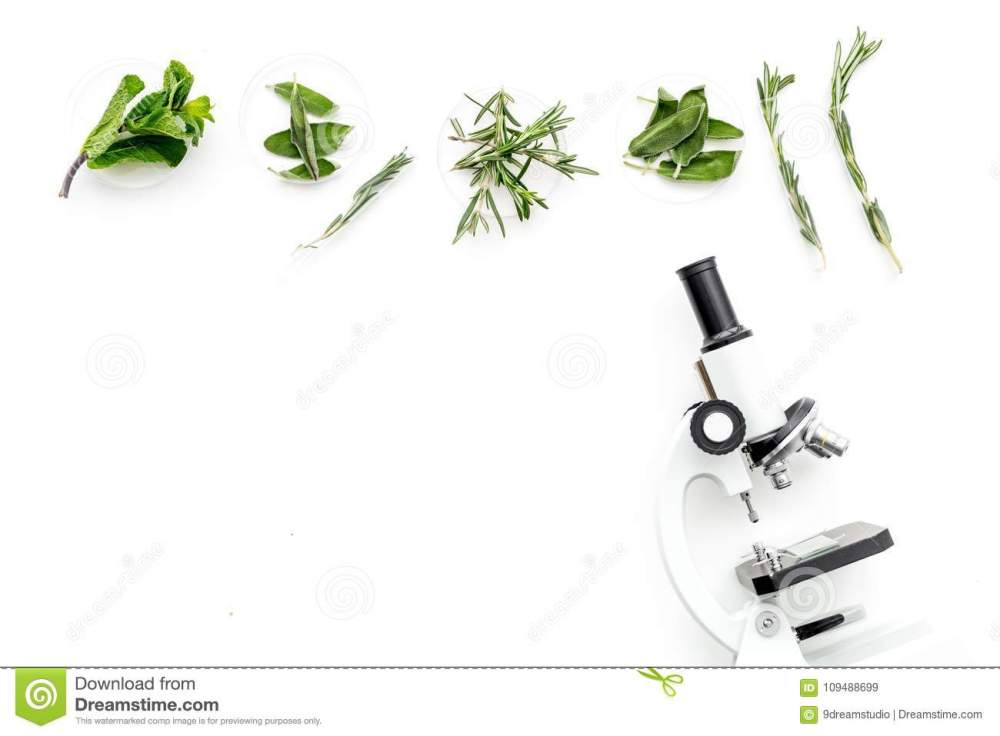 medium resolution of food analysis pesticides free vegetables herbs rosemary mint near rosemary flower rosemary herb diagram