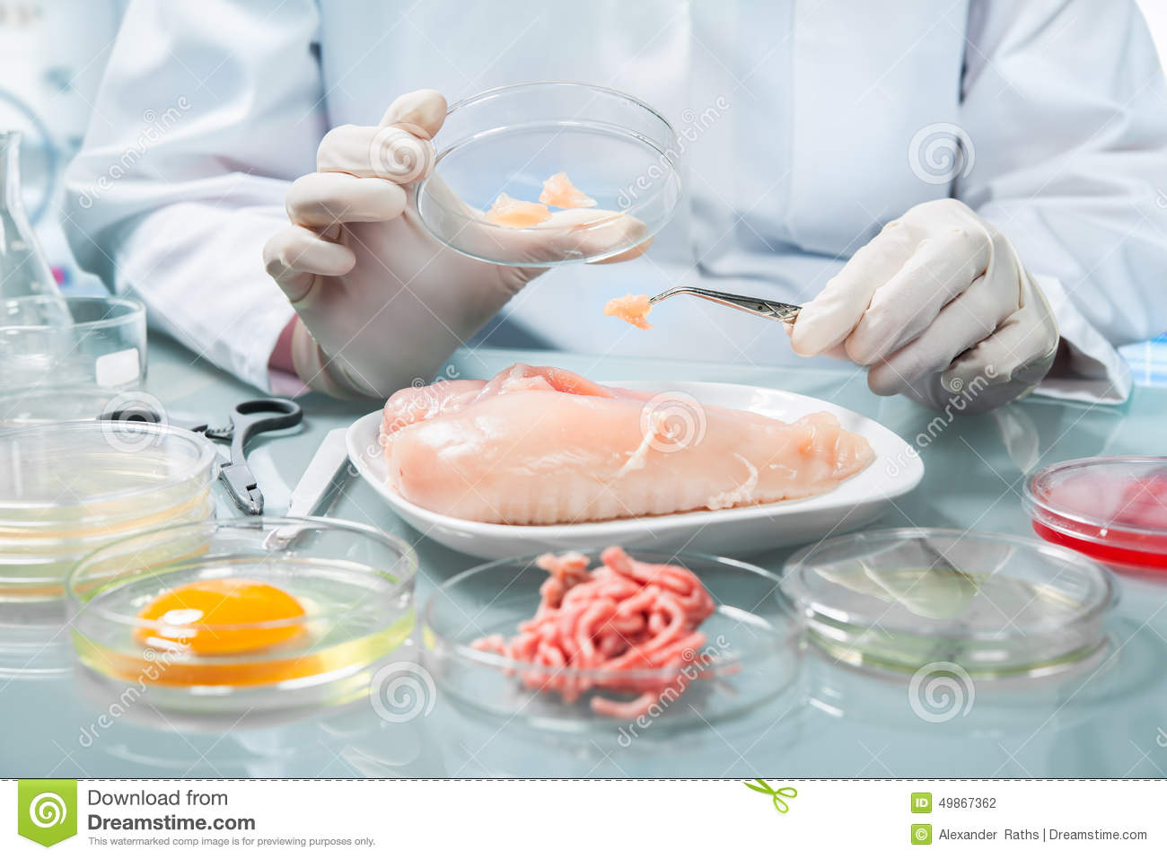 Food Safety Concept Stock Photo  Image 49867362