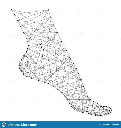 small resolution of foot female health fitness flexibility from abstract futuristic polygonal black lines and dots vector illustration