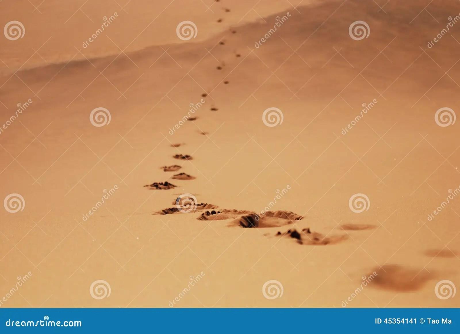 Footprint In Desert Stock Photo