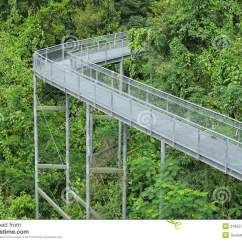 Forest Canopy Diagram Mercedes Benz Sprinter Radio Wiring Walkway Stock Photography Image 31855742