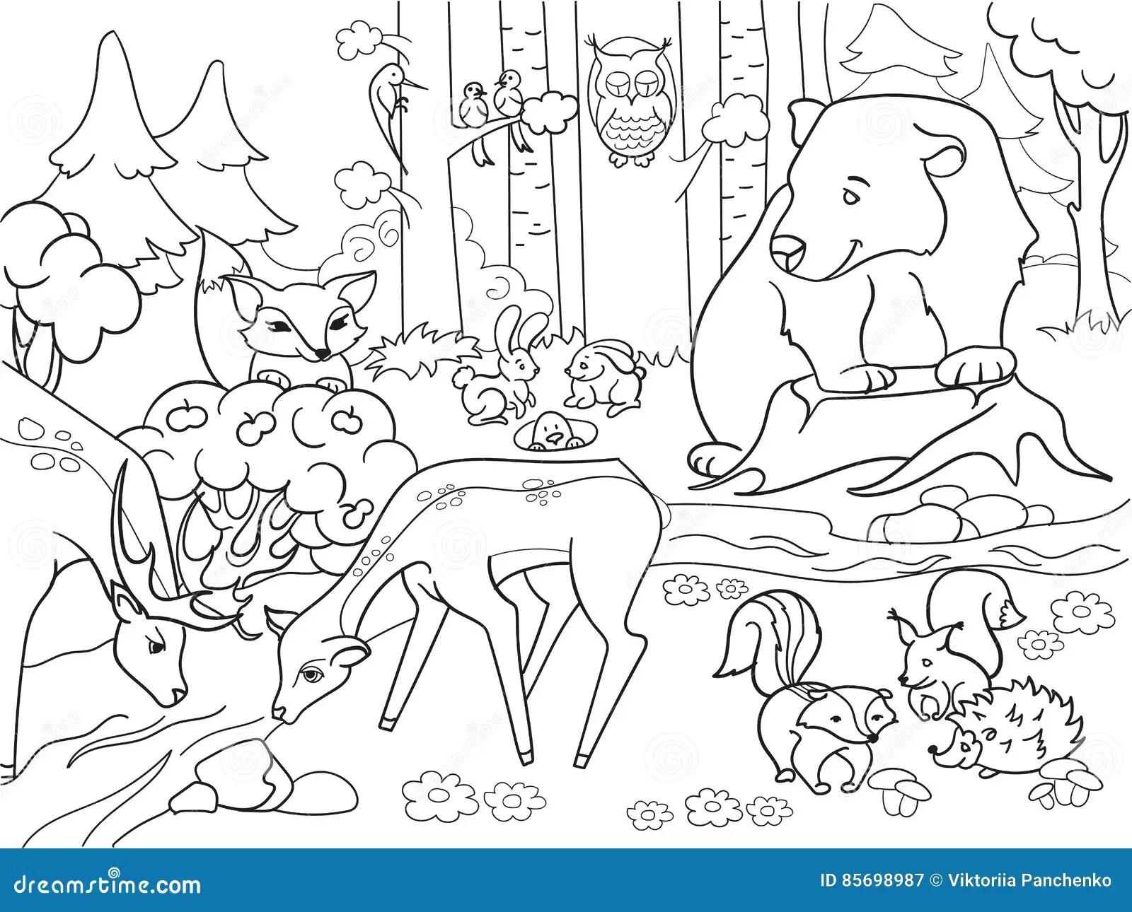 Forest Landscape Die Met Dieren Vector Voor Volwassenen