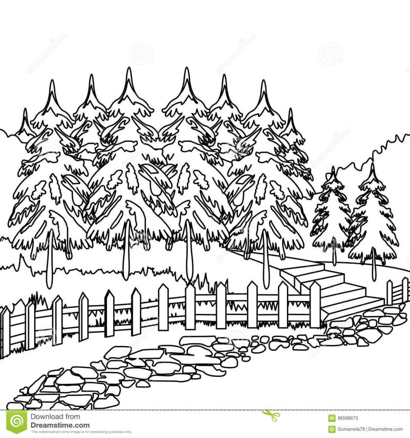forest pathway coloring page stock illustration