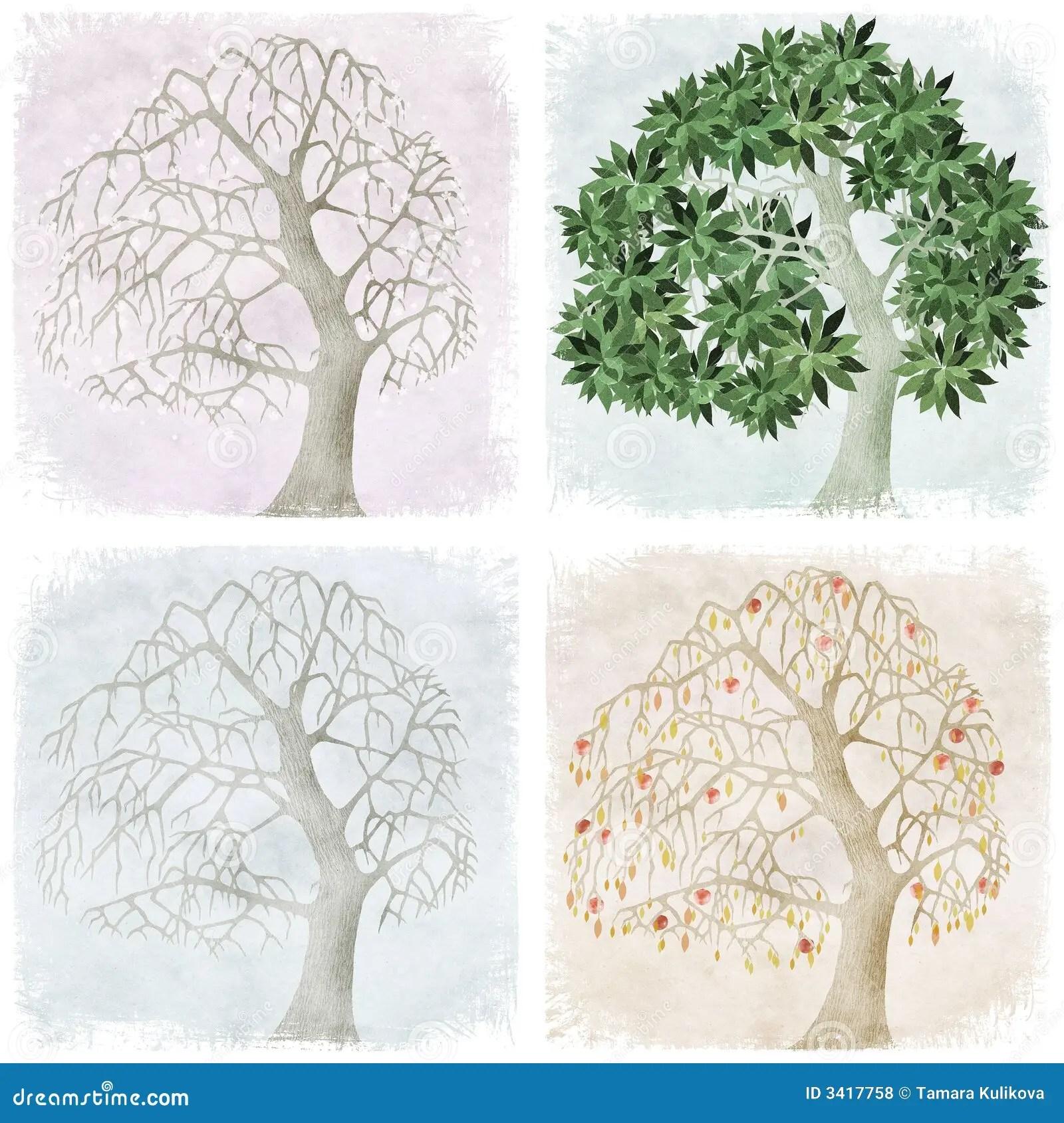 Four Seasons Of Apple Tree Royalty Free Stock Photos