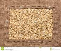 Frame Made Of Burlap With Oats Stock Photo - Image: 46800212