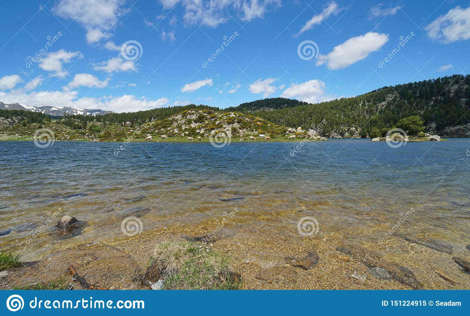 France Mountain Lake Shore With Islet Pyrenees Stock Image