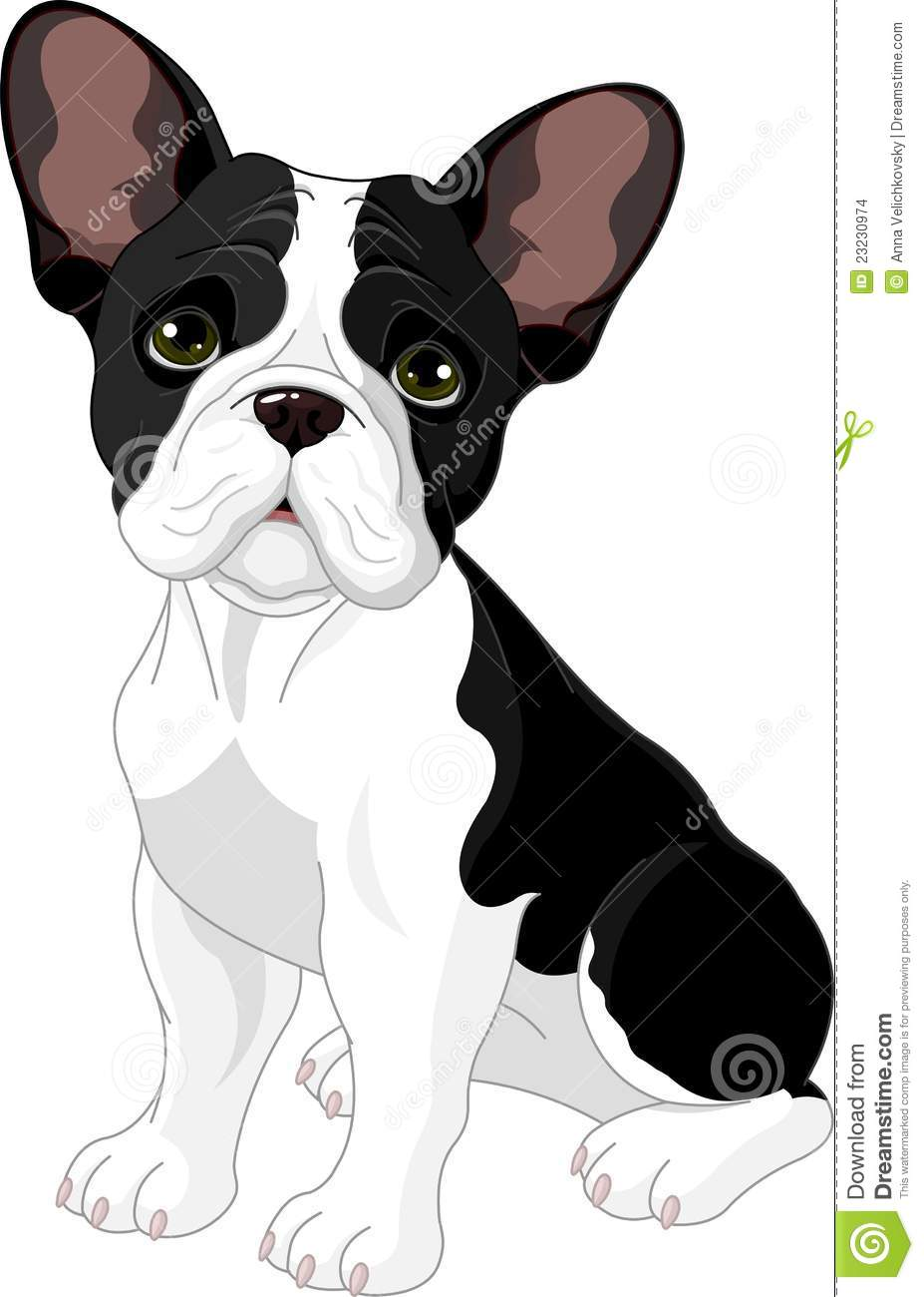 Cute Frenchie Wallpaper French Bulldog Stock Vector Image Of Themes Cartoon