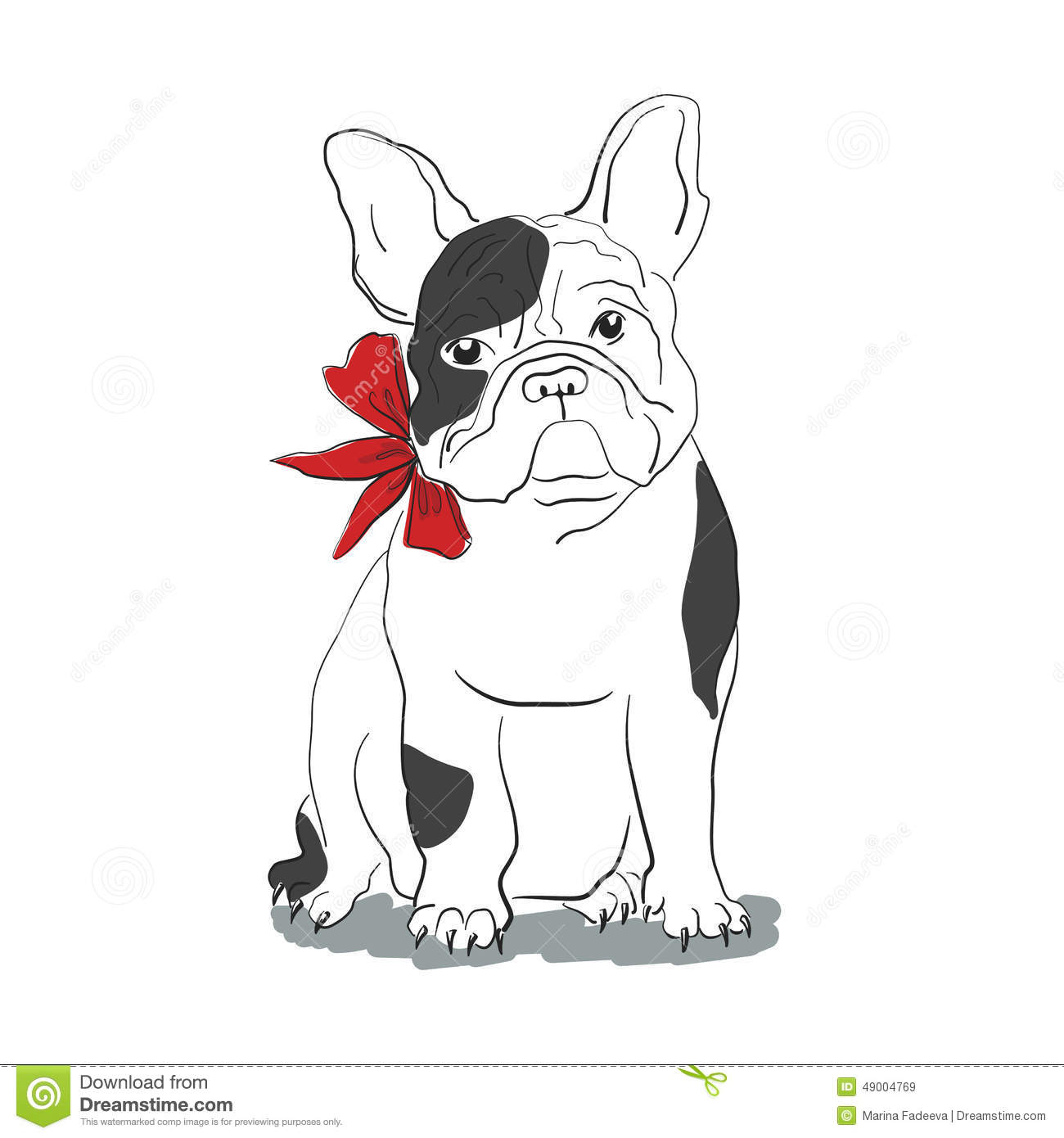 French Bulldog Sitting In Front Of White Background Stock