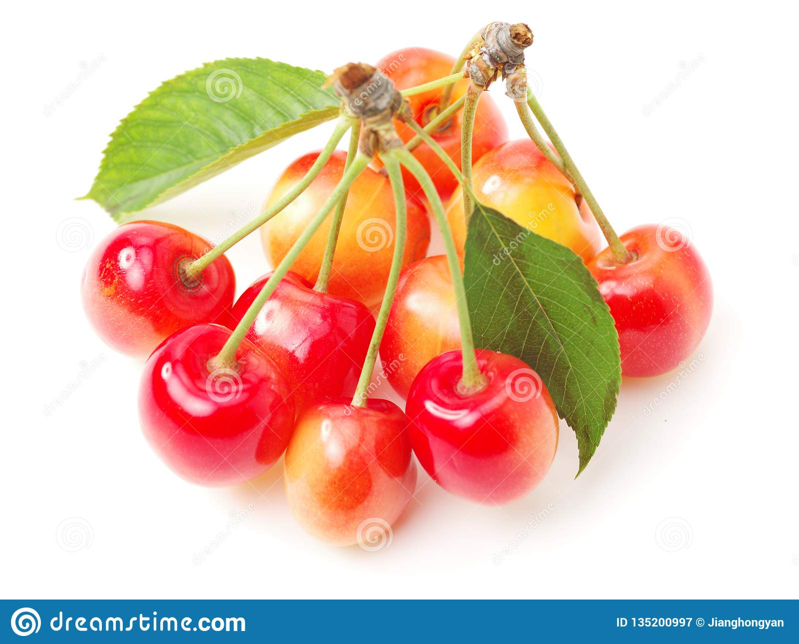 Fresh Red And Yellow Cherry With Green Leaf Stock Image