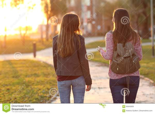 Friends Walking Sunset Stock - Of Enjoying 85645609