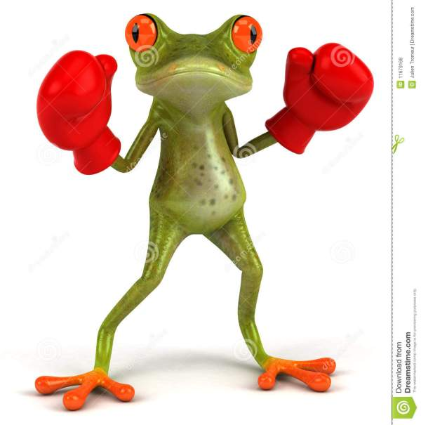 Frog Boxing Royalty Free Stock - 11679168