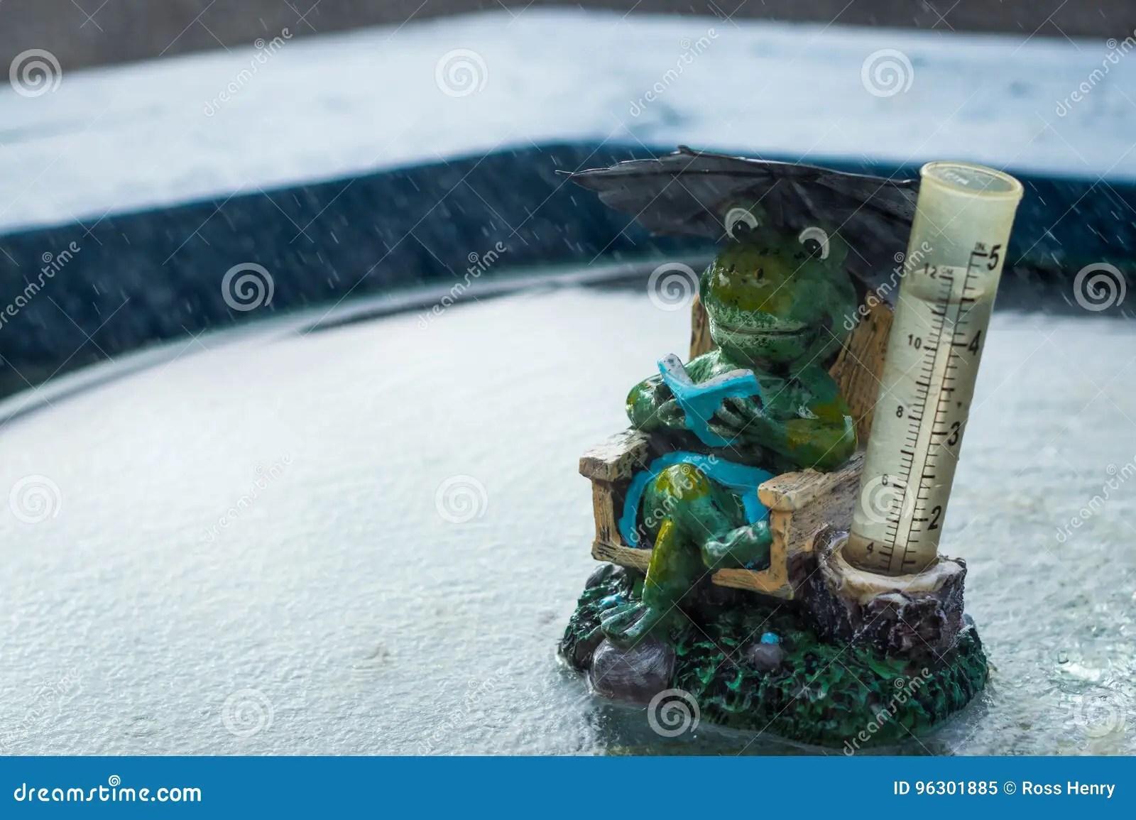 Frog Rain Gauge Stock Image Image Of Rain Water Frog
