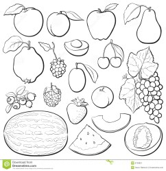 Clipart of fruits black and white