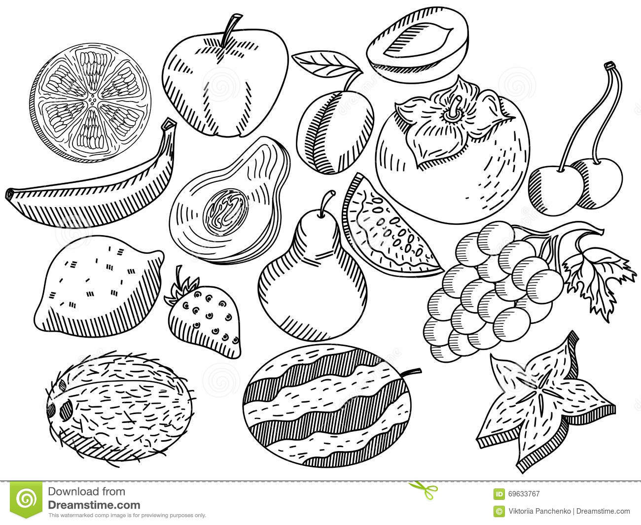 Fruits Coloring Book Vector For Adults Stock Vector