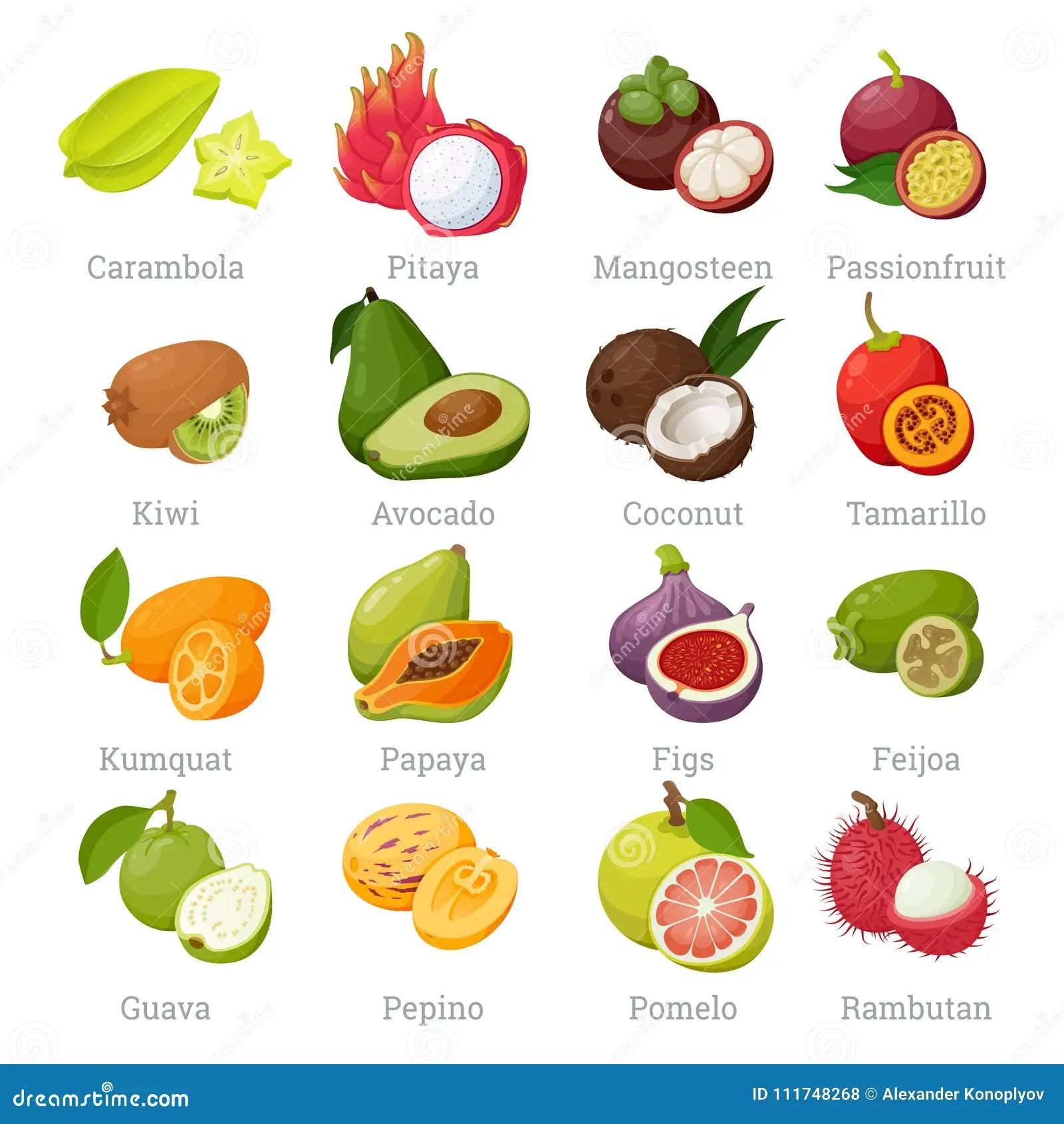Fruits Tropicaux Exotiques Regles Avec Des Noms